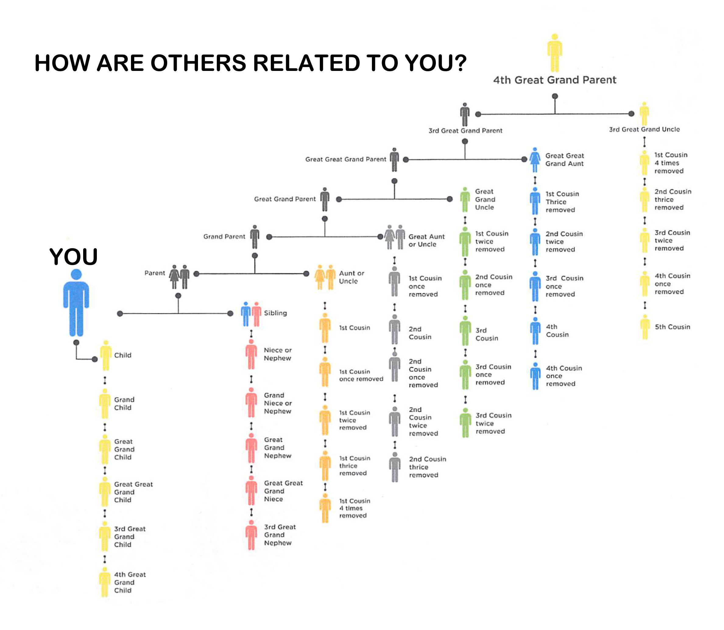 Relationship Chart - Coldwell Roots